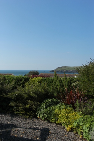 View from Cottage